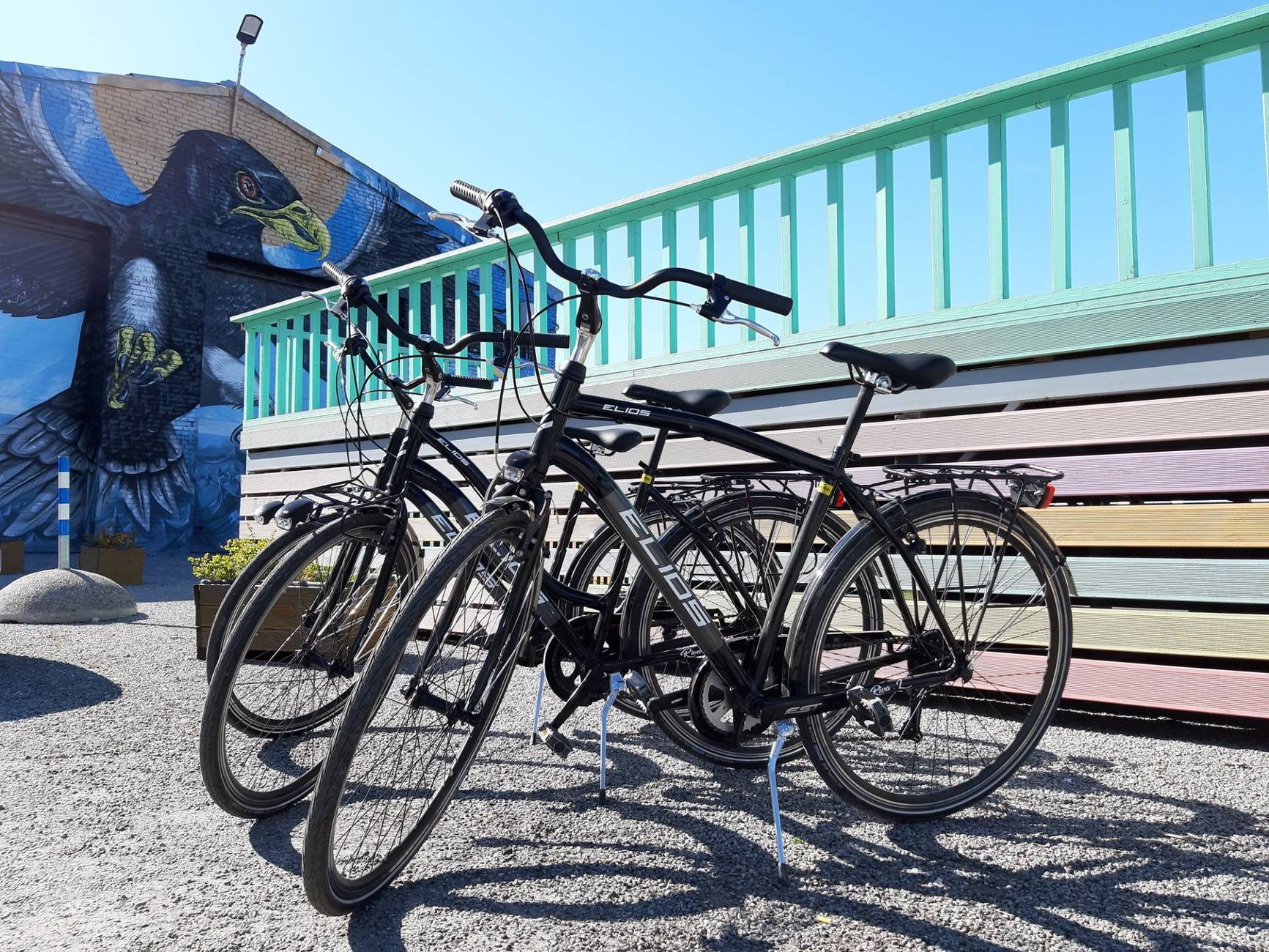 Waypoint Tallinn bicycle rental