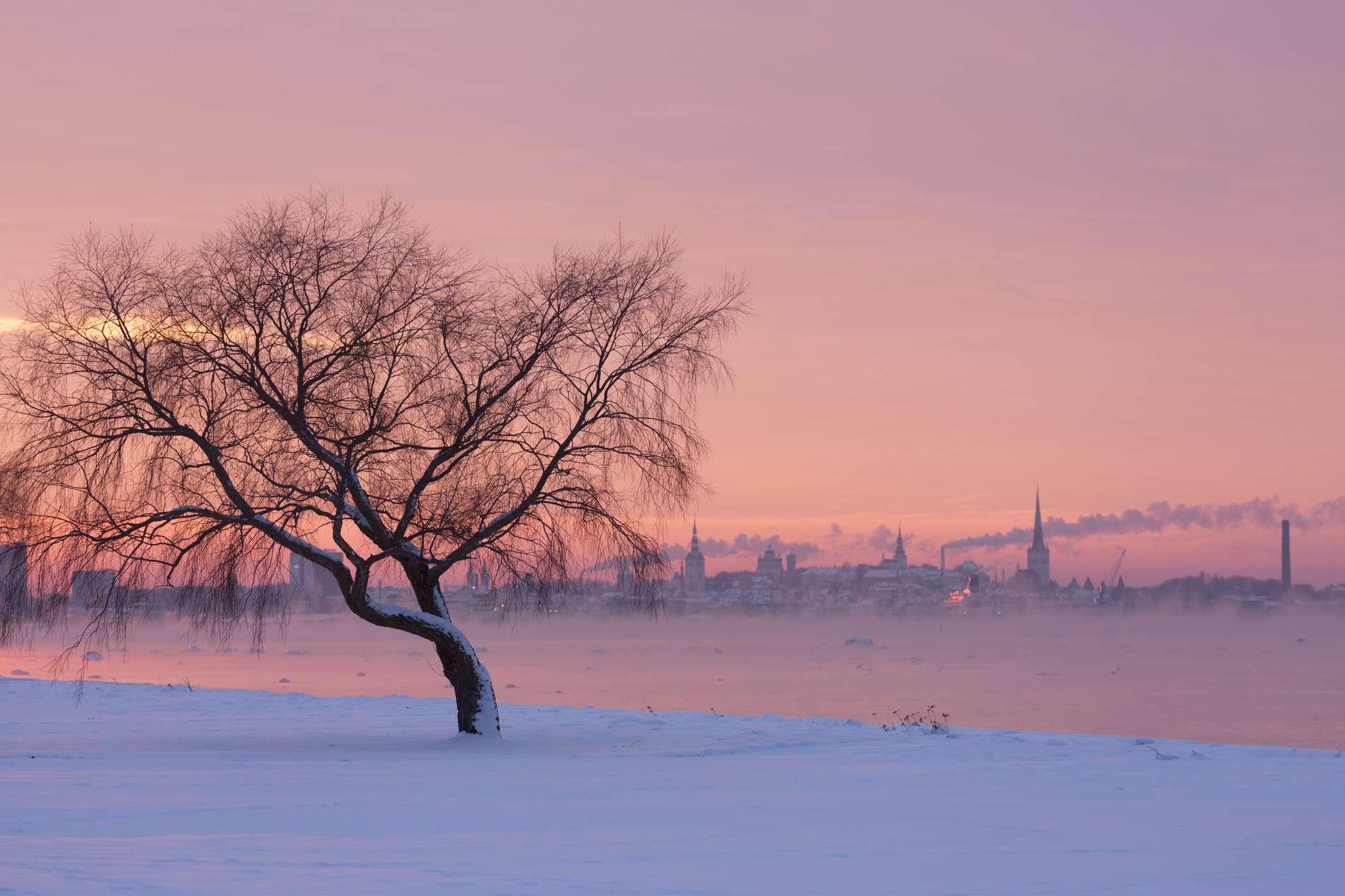 Pirita promenade in winter