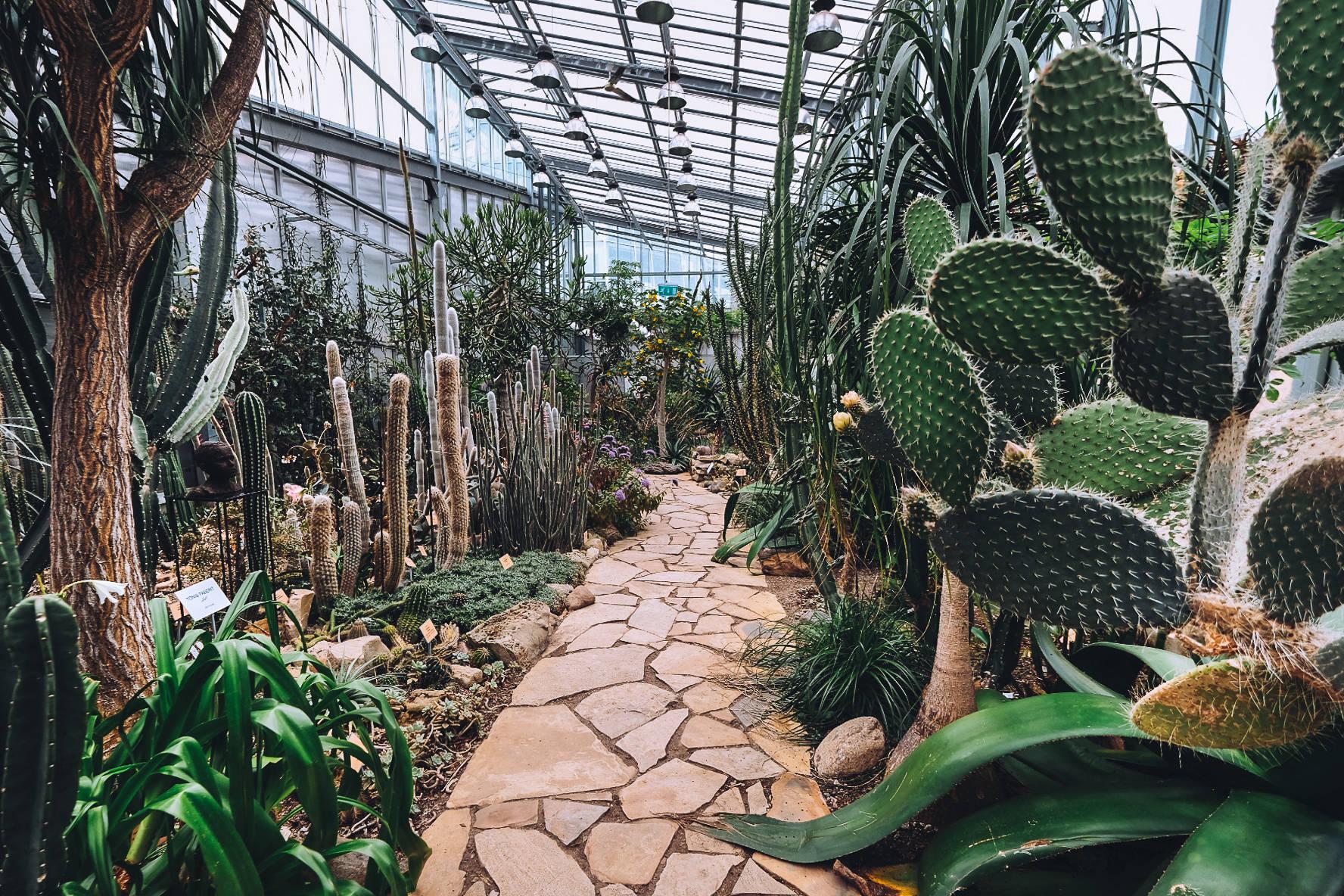 Таллиннский ботанический сад, Эстония