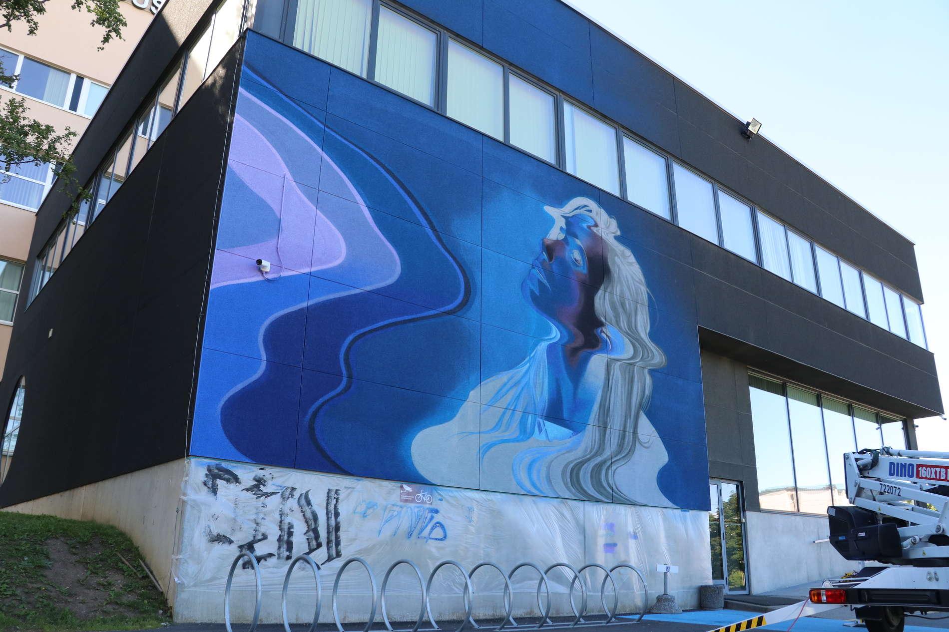 Mextonia  transgraffiti-katutaidefestivaali Tallinnassa