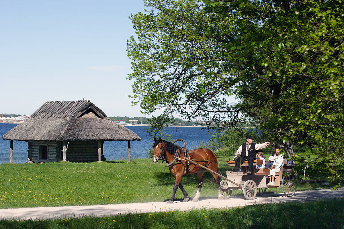 Horse carriage at the Open Air Museum in Tallinn, Estonia