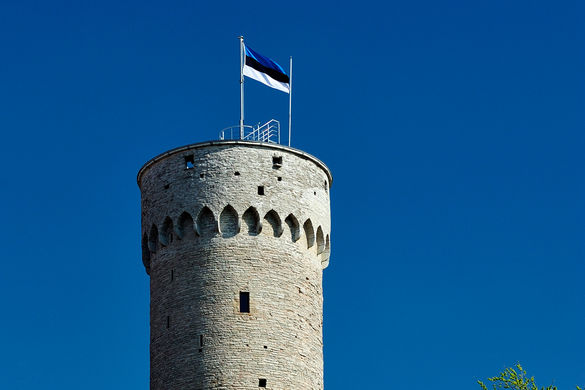 What to do in Tallinn on Independence Day, February 24?