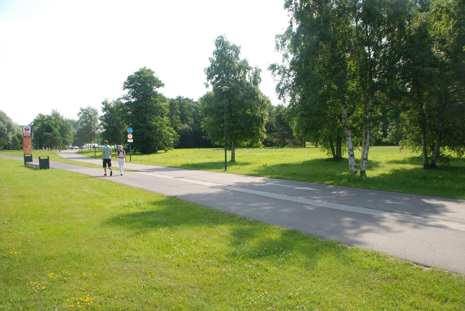 Lillepi park 2011