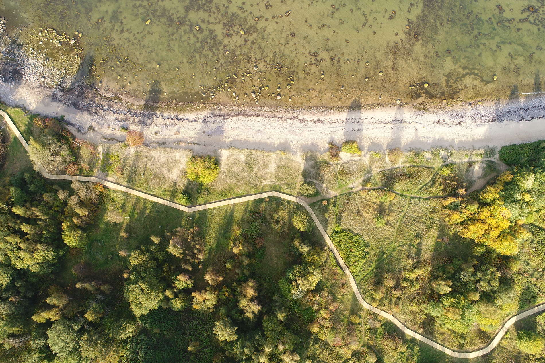 Paljassaare Special Conservation Area
