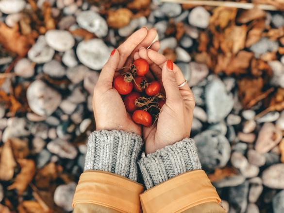 Girl holding a handful of rosehips by the sea