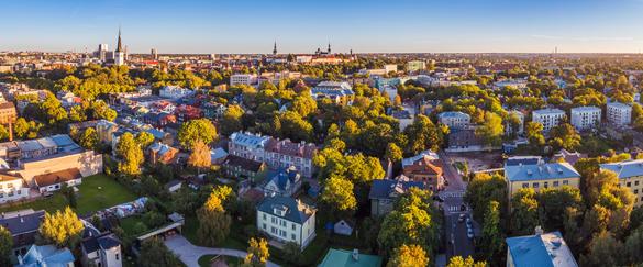 Панорамный вид сверху на район Каламая летом, Таллинн, Эстония