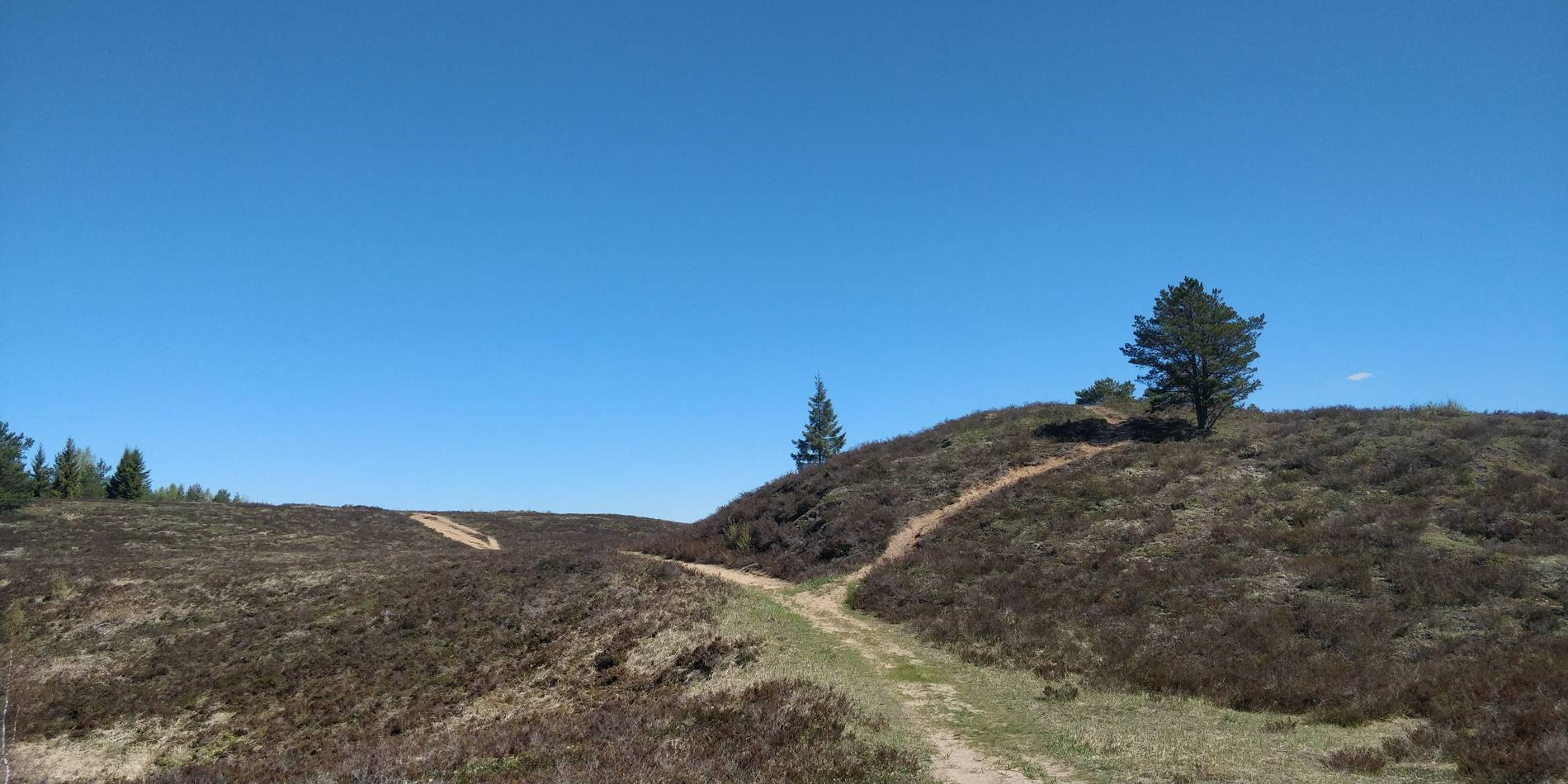 Go North– Private Day Trip to Nature