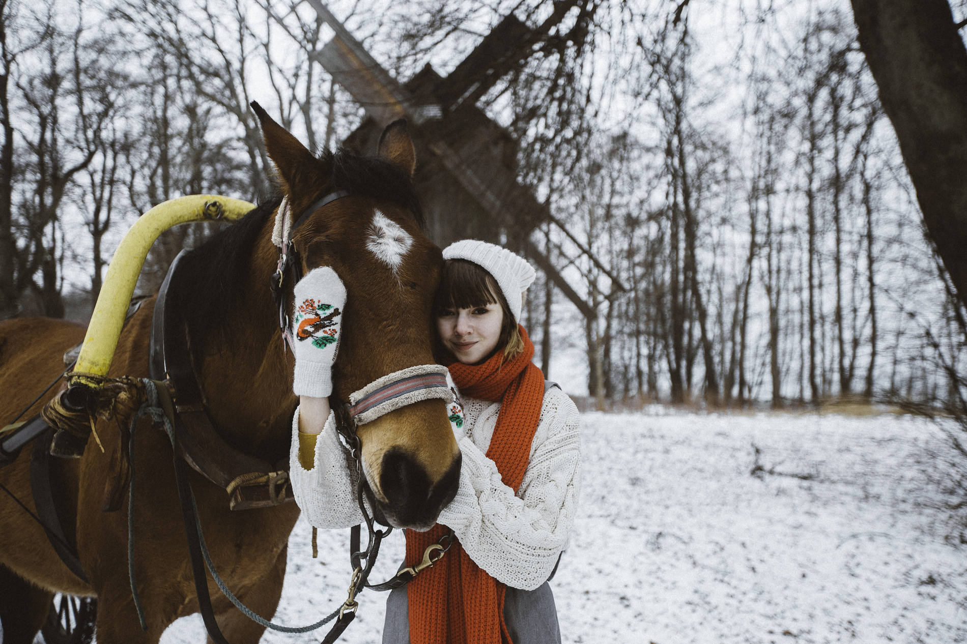 Horse and a girl at the snowy Estonian Open Air Museum