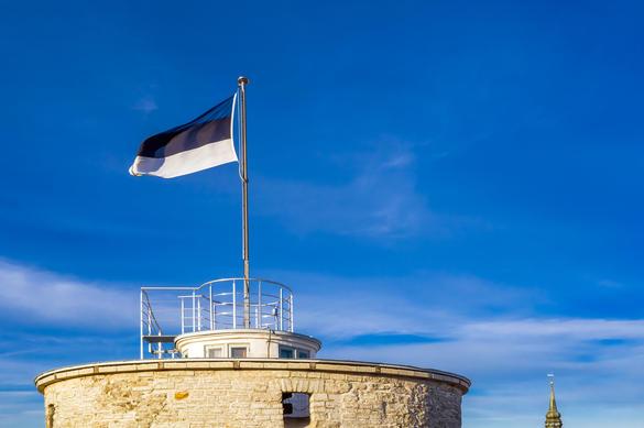 Развивающийся флаг Эстонии на Башне Длинный Герман, Старый город, Таллинн, Эстония