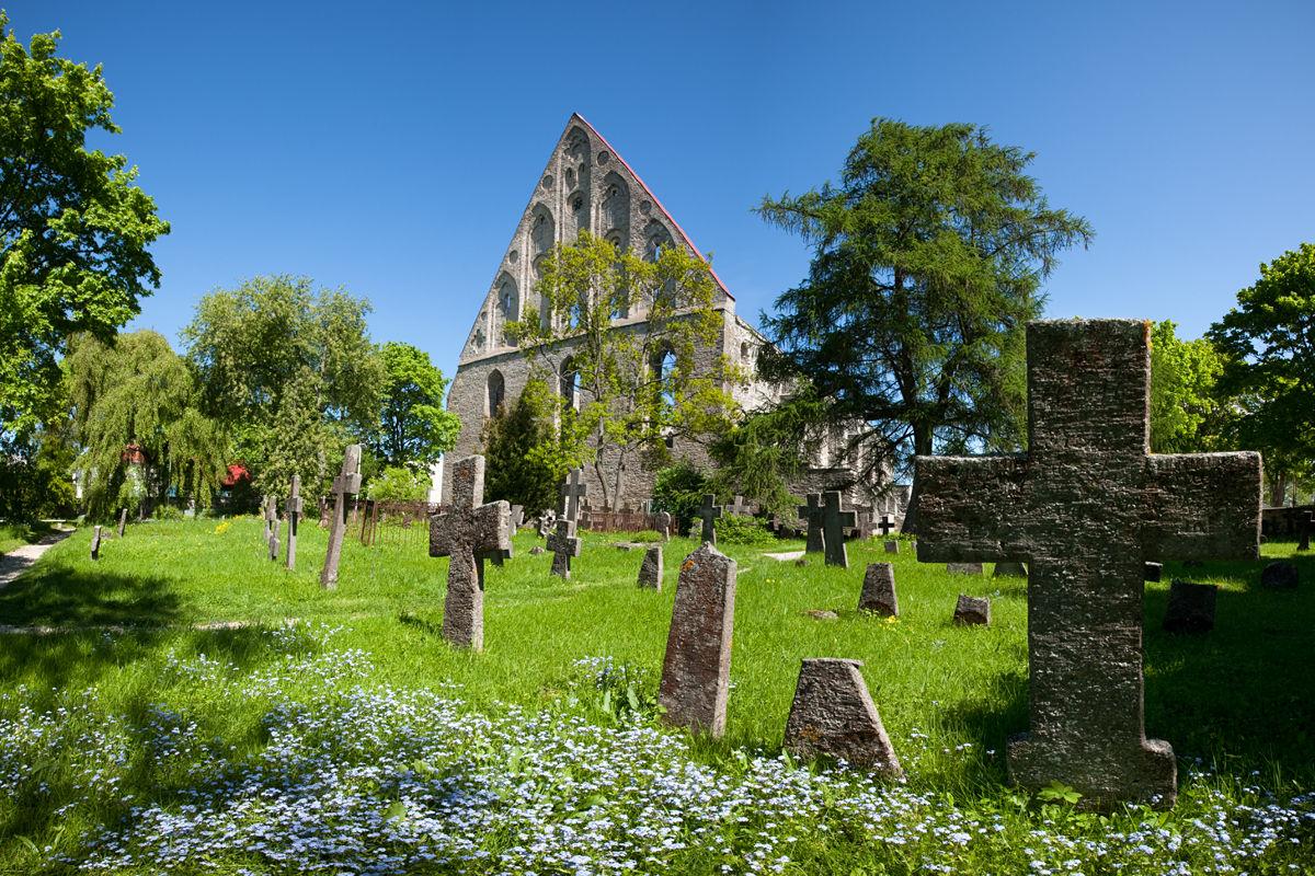 Ruinen des St. Brigittenklosters