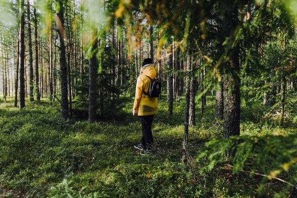 Woman standing in a deep green forest in the surroundings of Tallinn, Estonia.