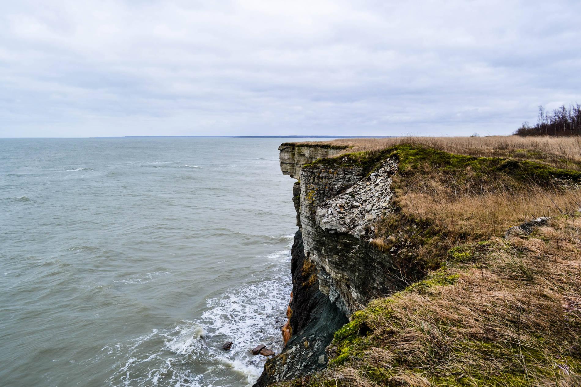 Coastal cliff in Estonia